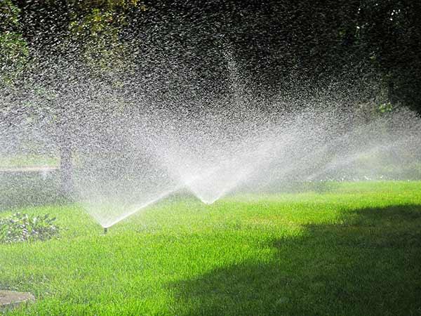 Costi-progettazione-impianti-di-irrigazione-Carpi